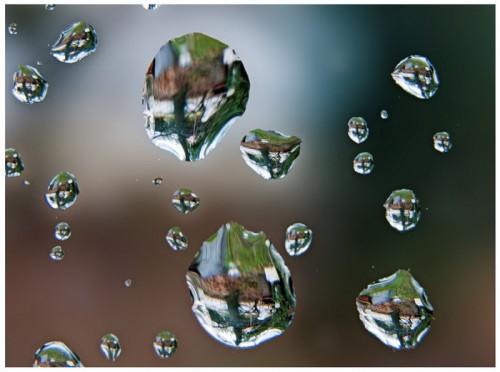 Blog-notes : 4 avril pluvieux et froid. dans Dire 59-128-gouttedeau-